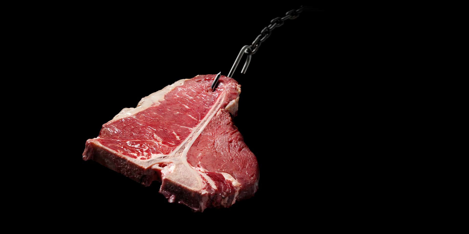 Het vlees van Castell is zoals hele goede seks